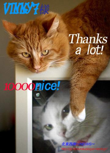 10000nice!VINNY7さん、ありがとうございます♪