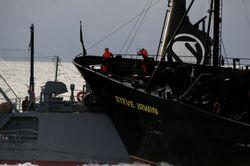日本鯨類研究所提供の写真2009/02/06