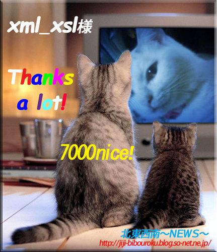7000nice-xml_xsl.jpg